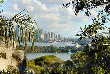 Things To Do In Sydney - Taronga Zoo